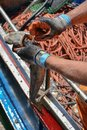 Fisherman cleaning freshly caught octopus in his boat Royalty Free Stock Photo
