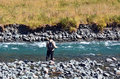 Fisherman fly fishing in fiordland eglinton river nz has a world renowned wild trout fishery and area offers many rivers streams Royalty Free Stock Image