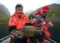 Fisherman holding Torsk Royalty Free Stock Photo