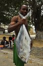 Fisherman with huge fish on the beach, island of mozambique Royalty Free Stock Photo