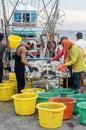Fisherman sizing fish Royalty Free Stock Photo