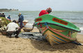 Fishermen on the beach negombo sri lanka aug remove fish from fishing nets at of negombo august Stock Photo