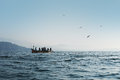 Fishermen on the boat pulling fishing net Royalty Free Stock Images