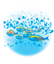 Fishes & blue bubbles Royalty Free Stock Photo