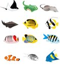 Fishes illustration Royalty Free Stock Photo