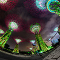 Fisheye Shot of Illuminated Towers at Garden by the Bay in Singa