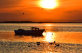 Fishing boat on the sea at sunset. Seagulls flying and swimming on the sea. Royalty Free Stock Photo