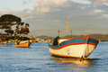 Fishing boats anchored in the cove of fishermen of tubul chile Stock Images