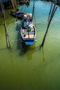 Fishing boats moored in the mangroves harbor Stock Image