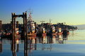 Fishing Boats in Nanaimo Harbour in Early Morning Light, Vancouver Island, British Columbia, Canada