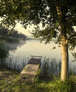 Fishing bridge, morning mist Royalty Free Stock Photo