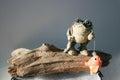 Fishing Frog Royalty Free Stock Photo
