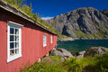 Fishing hut by fjord traditional old red with green roof in picturesque village of nusfjord on lofoten islands norway Stock Images