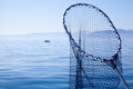 Fishing landing net in blue sea Stock Photography