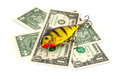 Fishing lure with money isolated on white background Royalty Free Stock Photo