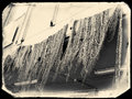 Fishing net in the harbour of livorno Stock Photos