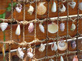 Fishing net with shells Stock Images