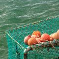 Fishing orange buoy and green nets, location - New Zealand Royalty Free Stock Photo