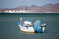 Fishing pelicans resting on a boat anchored off shore in la paz mexico Royalty Free Stock Photos