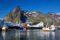 Fishing port in norway scenic on lofoten islands Royalty Free Stock Photos