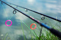 Fishing rods Royalty Free Stock Photo