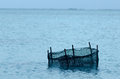 Fishing trap in aitutaki lagoon cook islands on the early morning light Stock Photo