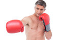 Fit man punching with boxing gloves on white background Stock Image