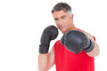 Fit man punching with boxing gloves on white background Royalty Free Stock Photo