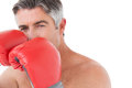 Fit man punching with boxing gloves on white background Royalty Free Stock Photography
