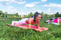 Fit woman doing plank exercise, working on abdominal midsection muscles. Fitness girl core workout in nature.
