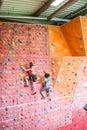 Fit women rock climbing indoors Royalty Free Stock Photo