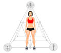 Fitness concept with fit woman in sportswear. Muscular Models cartoon girl. Woman with a sporty physique. Vector