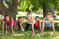 Fitness group planking in park on a sunny day Royalty Free Stock Photography