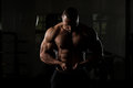 Fitness Shaped Muscle Man Posing In Dark Gym Royalty Free Stock Photo