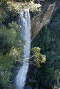 Fitzroy Falls Royalty Free Stock Photo