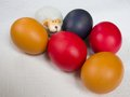 Five easter colored eggs with a toy sheep red yellow and dark blue lying on the white table cloth Stock Images