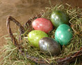 Five easter eggs in nest Royalty Free Stock Photo