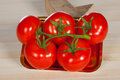 Five fresh red tomatoes with green stem in the tray , isolated on the background Royalty Free Stock Photo