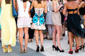 Five girls with nice legs in cocktail dress Royalty Free Stock Image