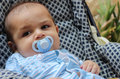 Five months old baby boy playing in the pushchair Royalty Free Stock Photo