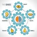 Five senses concept Royalty Free Stock Photo