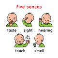 Five senses icon. Touch, taste hearing sight smell Royalty Free Stock Photo