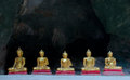 Five sitting golden buddha in the cave in thailand caveg at khao luang temple petchaburi Stock Photography