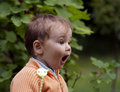 Flabbergasted look Royalty Free Stock Image