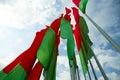 Flag Belarus Royalty Free Stock Photo