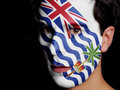 Flag of british indian ocean territory painted on a face a young man Stock Photos