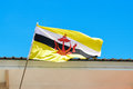 Flag of brunei darussalam national Stock Photography