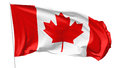 Flag of canada on flagpole national flying in the wind isolated white d illustration Stock Images