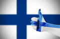 Flag of Finland Royalty Free Stock Photo