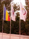 Flag flags from francofoniei square Royalty Free Stock Photography